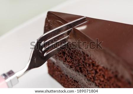 Chocolate cake on white dish and background - stock photo