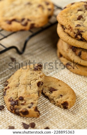 Chocolate Chip Cookie. Macro. Selective focus. Extreme shallow DOF.