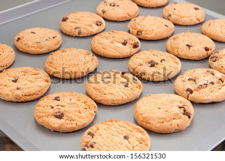 Chocolate chip cookies on a baking tray - stock photo