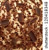Chocolate chips on ice cream close up detail - stock photo