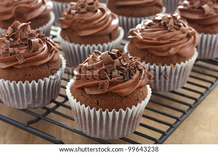 Chocolate cupcakes with chocolate swirl icing - stock photo