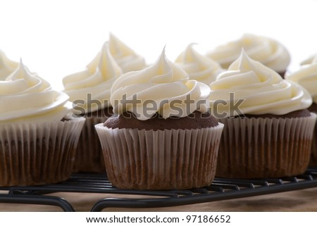 Chocolate cupcakes with vanilla frosting on a white background - stock photo