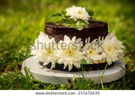 chocolate delicious cake decorated with white flowers and green leafs stand on grass - stock photo