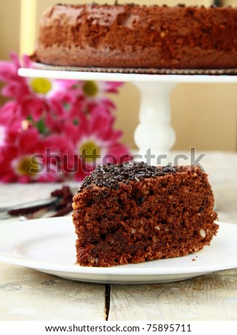 chocolate delicious cake on white plate