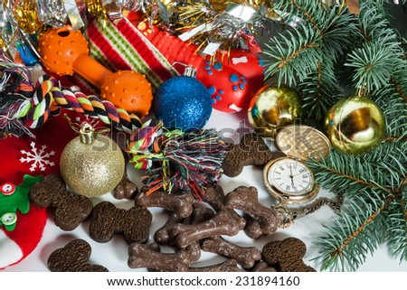 Chocolate dog cookies and toys in a Santa sock surrounded by Christmas decor - stock photo