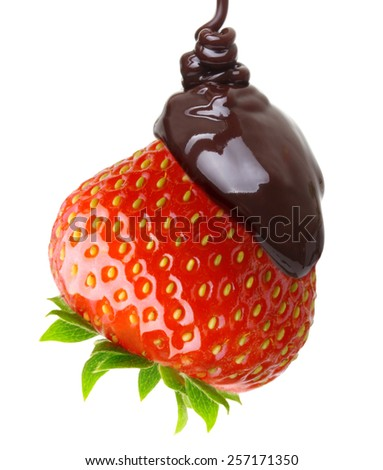 Chocolate drop on red berry strawberry isolated on white background - stock photo
