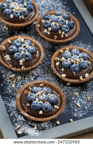 chocolate mousse with fresh blueberries and nuts in tartlets, top view, vertical - stock photo