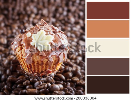 Chocolate muffin  with complimentary swatches. - stock photo