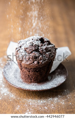 Chocolate muffin with powdered sugar