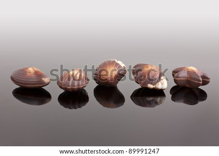 Chocolate shells, belgian chocolate specially
