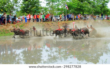 CHONBURI THAILAND - JULY 19 : Status of traditional buffalo race, which is held annually at Chonburi, Thailand. on July 19, 2015. Traditionally held by farmers to conserve water buffalos in Thailand.