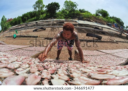 CHONBURI THAILAND-NOVEMBER 09 :A fisherman laying out his catch to dry in the sun on November 09, 2013 in Chonburi, Thailand