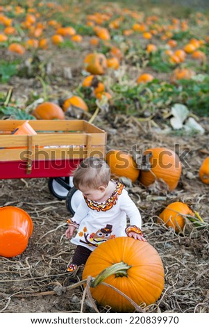 Choosing a pumpkin at a pumpkin patch on Fall day.