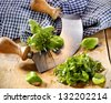 Chopping a selection of mixed herbs in a bunch including basil, parsley and chives using a two handled curved rocker blade on a wooden tabletop - stock photo