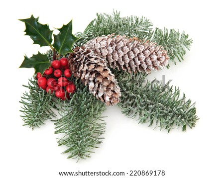 Christmas and winter decoration with holly, pine cones, mistletoe and  fir leaf sprigs over white background. - stock photo