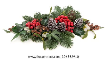 Christmas and winter flora with holly, mistletoe, pine cones and traditional greenery over white background. - stock photo