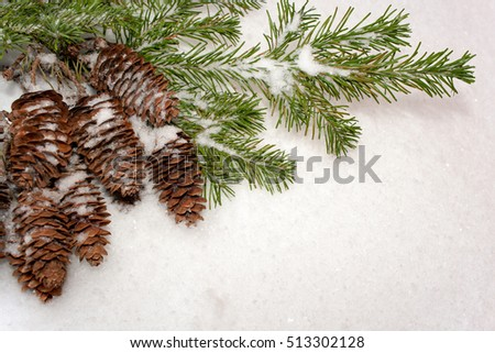 Christmas background. Bunch of cones and green spruce branches on white snow background. The angle diagonal composition.