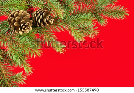 christmas background. fir branches and cones on red