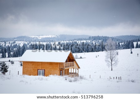 christmas background of winter landscape with snow or hoarfrost covered fir trees - winter magic holiday