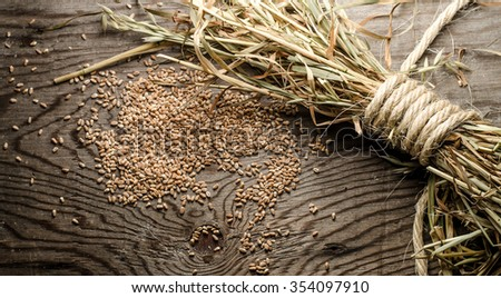 Christmas background.Rural scene with grains and ears of wheat, apple and walnuts.Bowl with kutia - traditional Christmas sweet meal in Ukraine,horizontal photo - stock photo