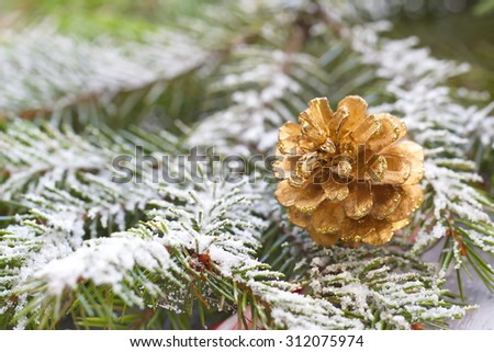 Christmas background with fir tree and cone