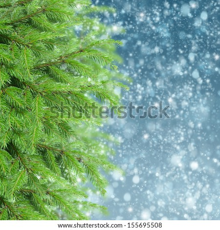 christmas background with fir tree and snow - stock photo