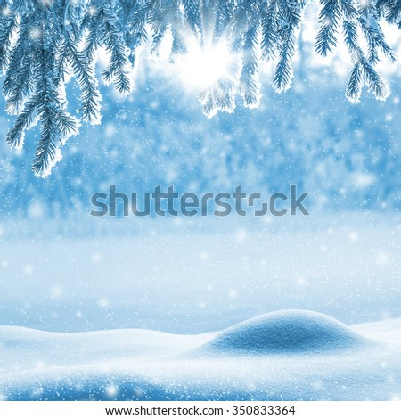 Christmas background  with snowdrifts and tree branches in hoarfrost - stock photo