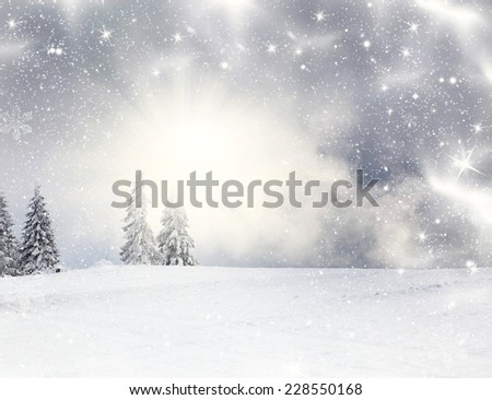 Christmas background with snowy fir trees and copy space - stock photo