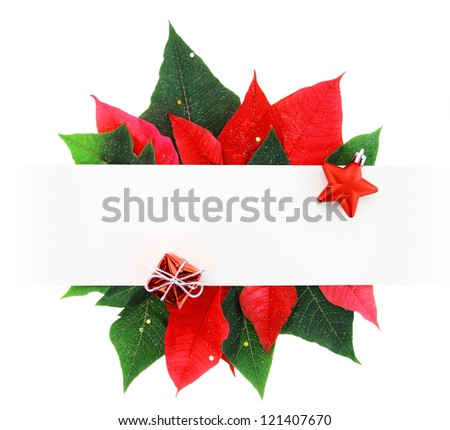 Christmas banner made of poinsettia leaves - stock photo