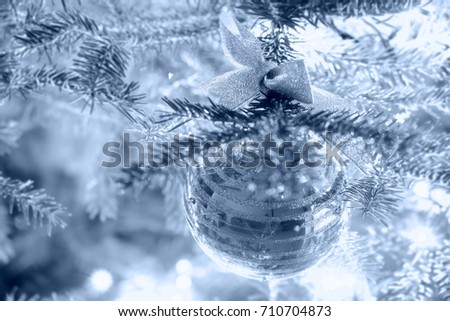 Christmas bauble with a bow hanging on a spruce branch, blue tinted