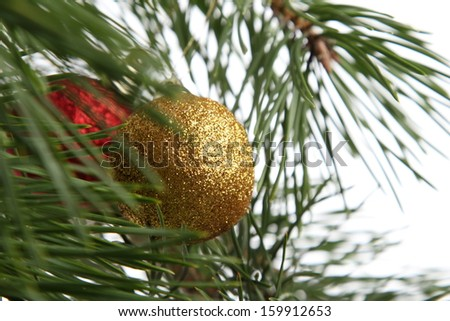 Christmas baubles on christmas tree isolated on white/Red and golden christmas ball on a pine tree isolated on white