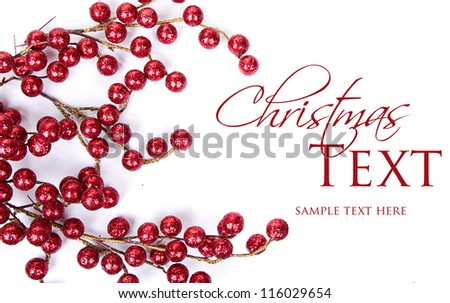 Christmas berries on white background