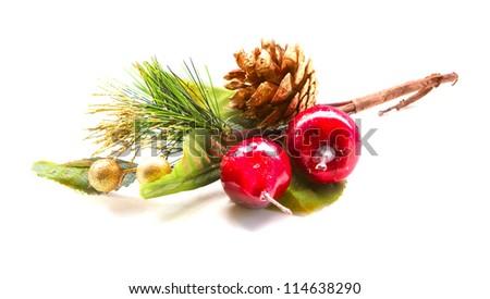 christmas berry - stock photo