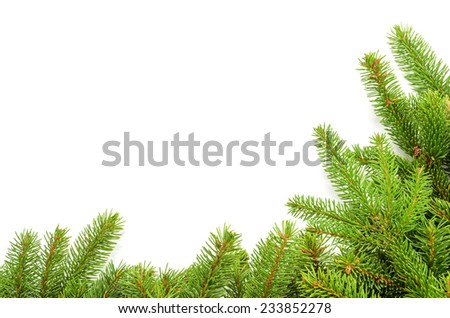 christmas border made from spruce branches over white - stock photo