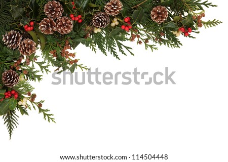 Christmas border of holly, ivy, mistletoe and cedar cypress leaf sprigs with pine cones over white background. - stock photo