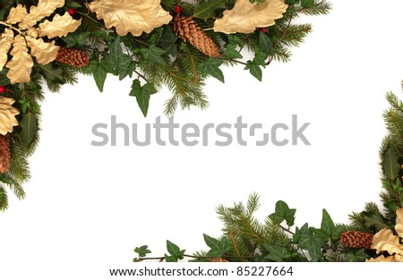 Christmas border of holly, ivy, pine cones, golden oak leaves and blue spruce fir leaf sprig isolated over white background. - stock photo
