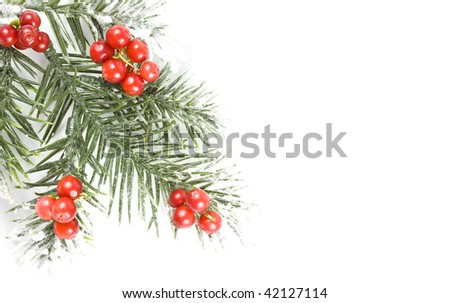 christmas branch with copy space for your text - stock photo