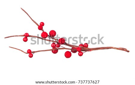 Christmas branch with red fruits isolated on a white background