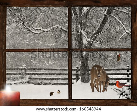 Christmas card design with  a mother, and baby deer, a bright red Cardinal, and two cute chickadees in a snowstorm, as seen through a grunge farm house window. - stock photo
