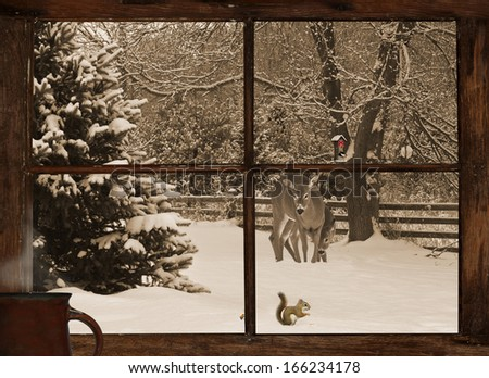 Christmas card design with a mother deer, and her baby, examining a little squirrel eating seeds in the snow, with an adorable chickadee on the feeder, as seen through the farmhouse window..  - stock photo
