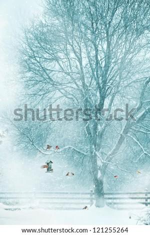 Christmas card design with birds  gathering around a bird feeder during a snow storm. - stock photo