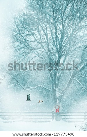 Christmas card design with softly toned background featuring a male and female redpoll on a branch near the feeder. - stock photo