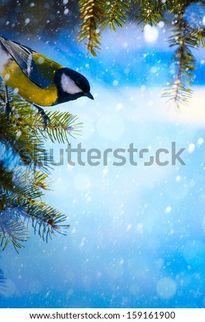 Christmas card with tits on the Christmas tree and snowflakes - stock photo