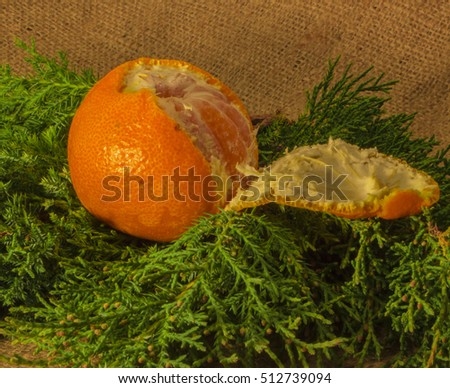 Christmas composition of mandarine