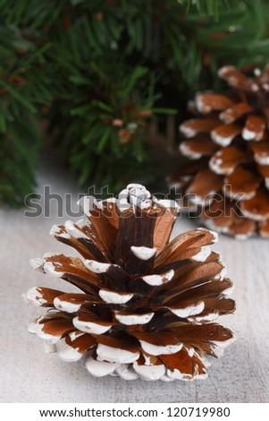 Christmas composition with cones and spruce branches