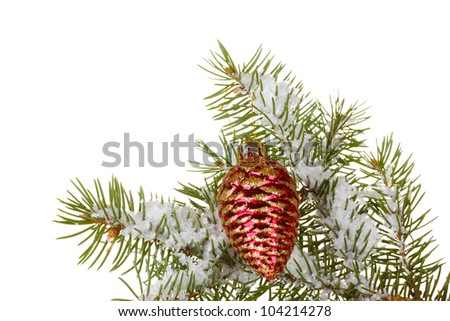 Christmas cone on the tree on white background - stock photo
