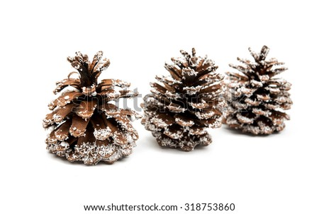 Christmas cones on a white background - stock photo