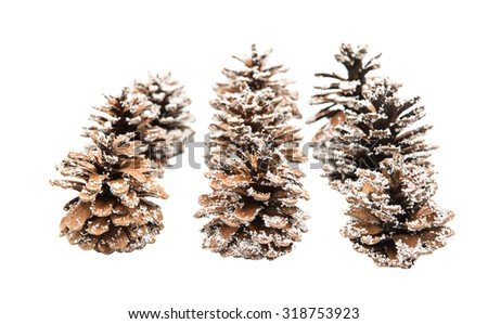 Christmas cones on a white background