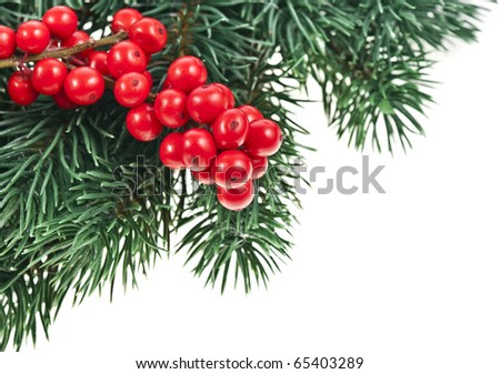 Christmas Corner border of  fir twig with red berries isolated on white - stock photo
