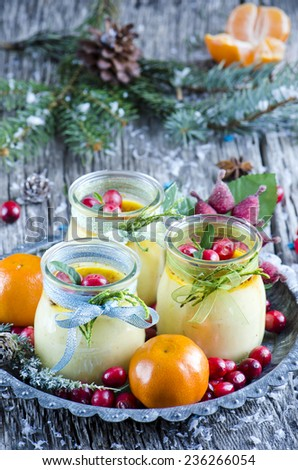Christmas creme brulee with cranberries and mandarin oranges - stock photo